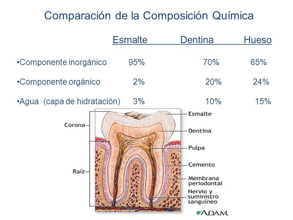 Comparación de la Composición Química