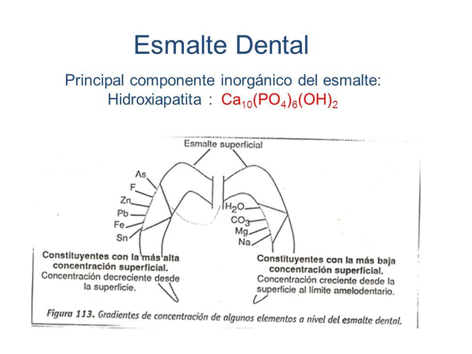 Esmalte Dental Principal componente inorgánico del esmalte: Hidroxiapatita : Ca10(PO4)6(OH)2