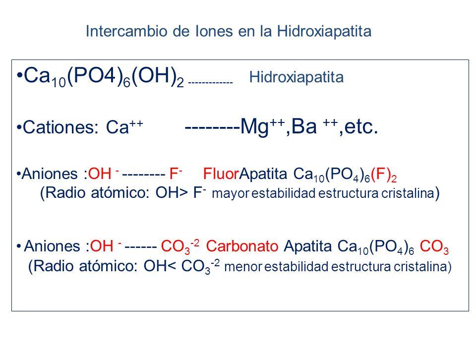 Ca10(PO4)6(OH)2 ------------- Hidroxiapatita