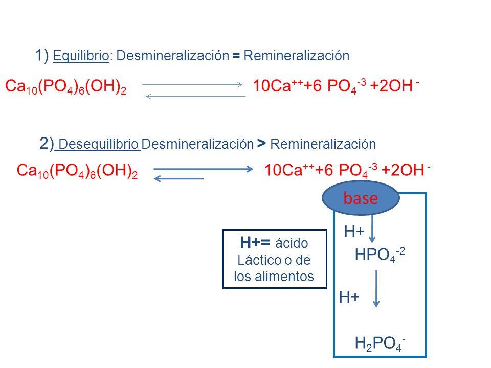 1) Equilibrio: Desmineralización = Remineralización
