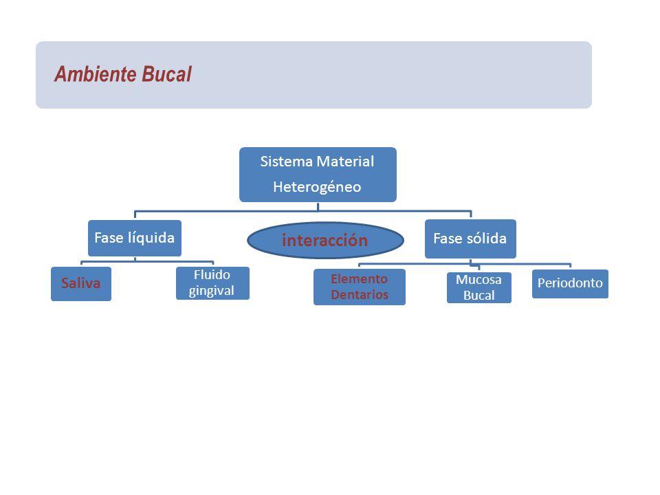 Ambiente Bucal interacción Sistema Material Heterogéneo Fase líquida