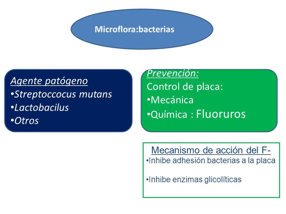 Mecanismo de acción del F-