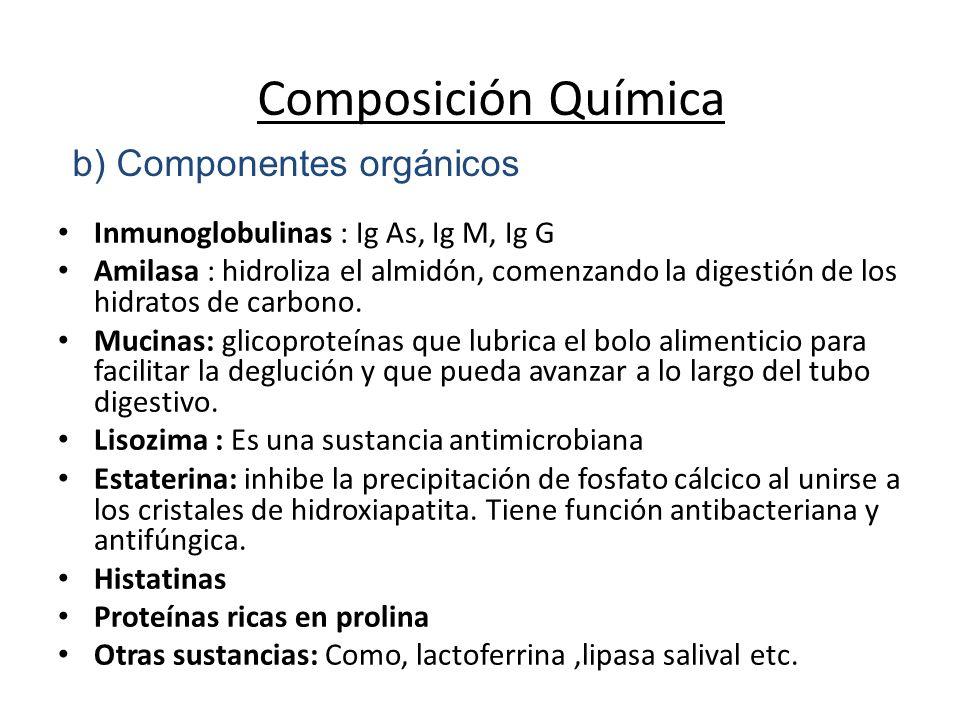 b) Componentes orgánicos