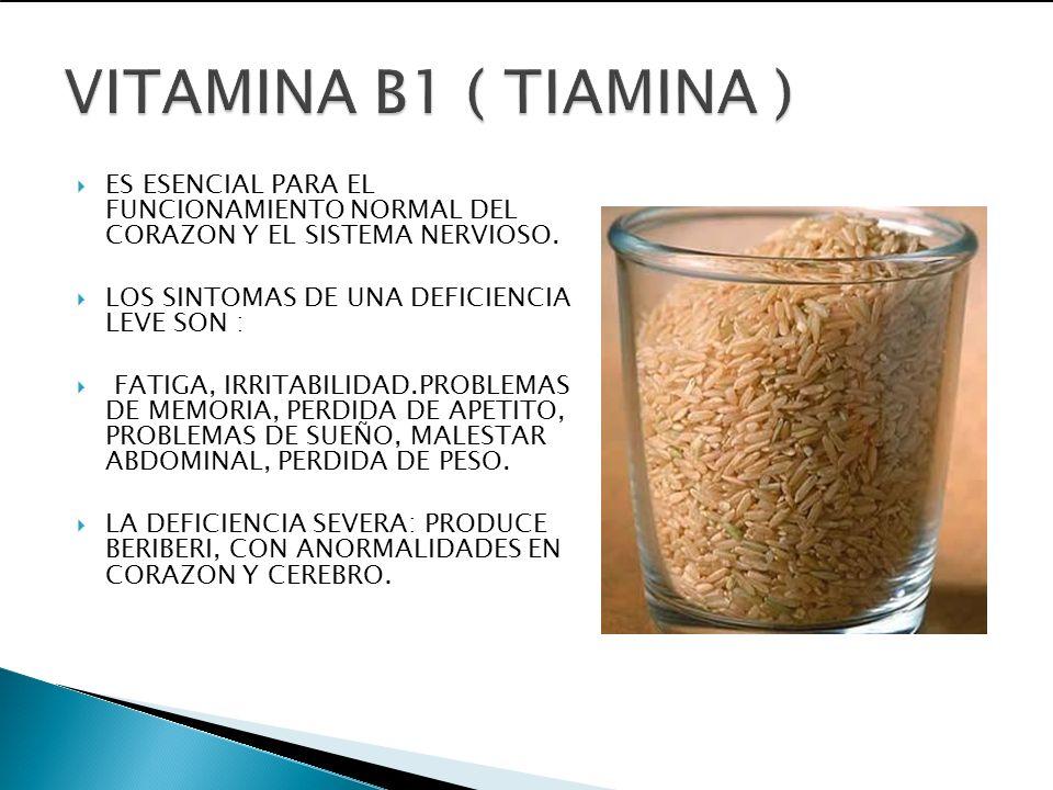 VITAMINA B1 ( TIAMINA )ES ESENCIAL PARA EL FUNCIONAMIENTO NORMAL DEL CORAZON Y EL SISTEMA NERVIOSO.