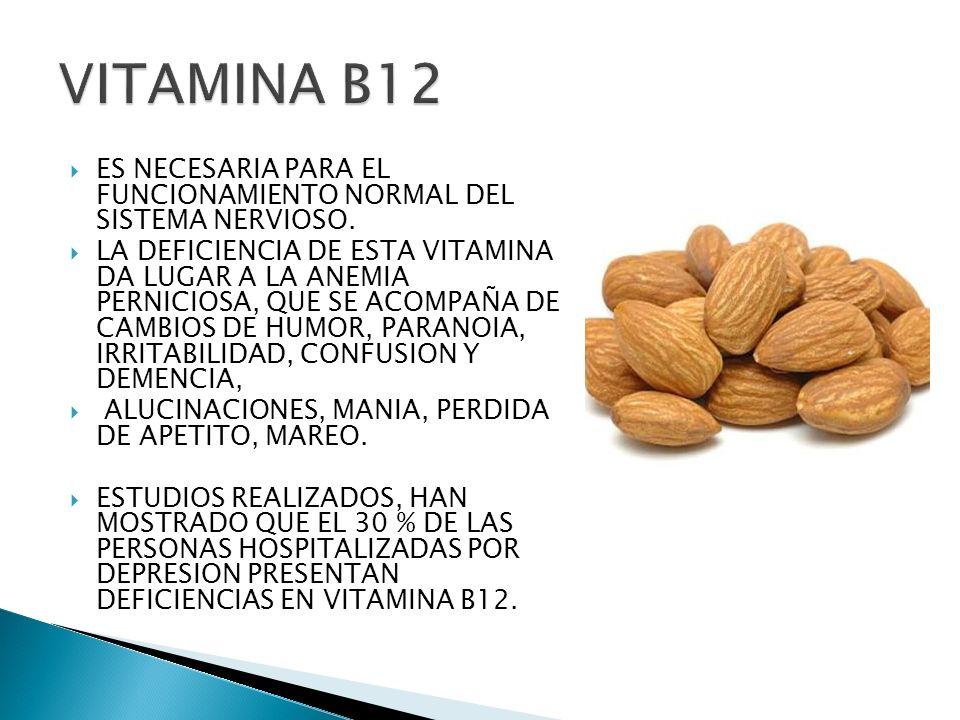 VITAMINA B12ES NECESARIA PARA EL FUNCIONAMIENTO NORMAL DEL SISTEMA NERVIOSO.
