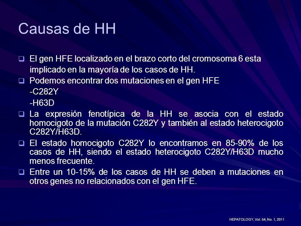 Causas de HH El gen HFE localizado en el brazo corto del cromosoma 6 esta. implicado en la mayoría de los casos de HH.
