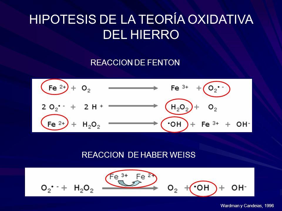 HIPOTESIS DE LA TEORÍA OXIDATIVA DEL HIERRO