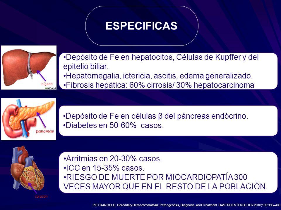 ESPECIFICAS Depósito de Fe en hepatocitos, Células de Kupffer y del epitelio biliar. Hepatomegalia, ictericia, ascitis, edema generalizado.