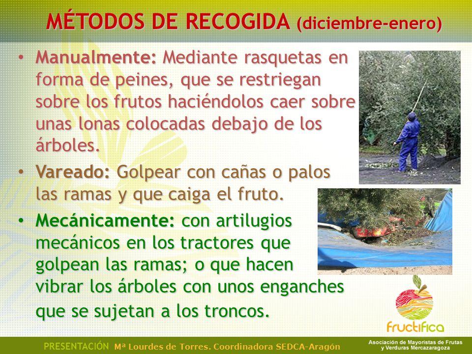 MÉTODOS DE RECOGIDA (diciembre-enero)