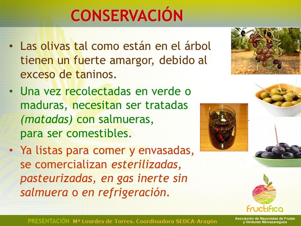 CONSERVACIÓN Las olivas tal como están en el árbol tienen un fuerte amargor, debido al exceso de taninos.