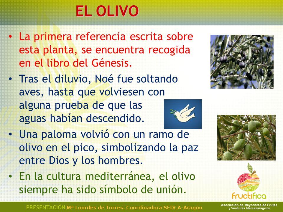 EL OLIVO La primera referencia escrita sobre esta planta, se encuentra recogida en el libro del Génesis.