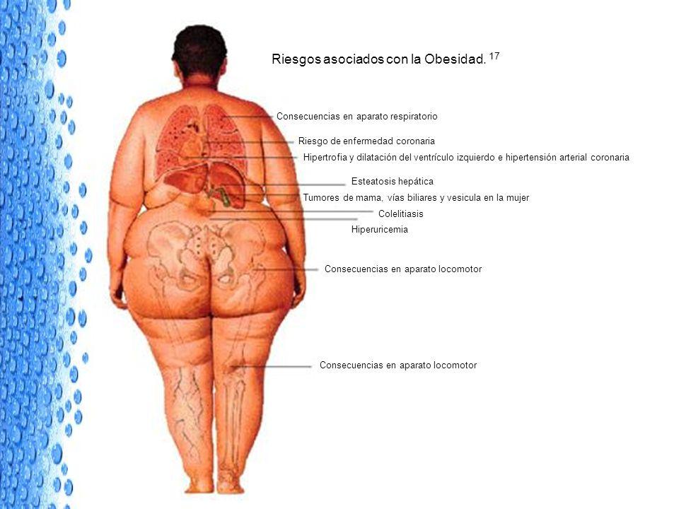 Riesgos asociados con la Obesidad. 17