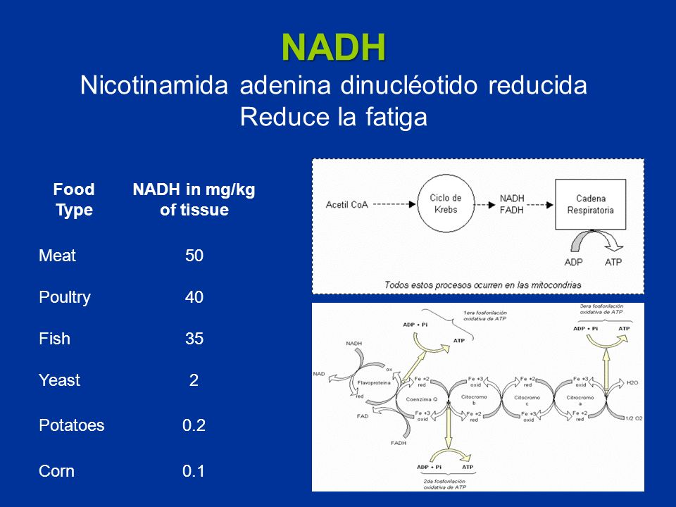 NADH Nicotinamida adenina dinucléotido reducida Reduce la fatiga