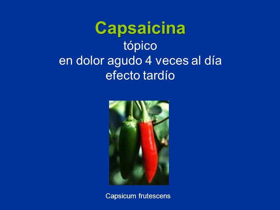 Capsaicina tópico en dolor agudo 4 veces al día efecto tardío