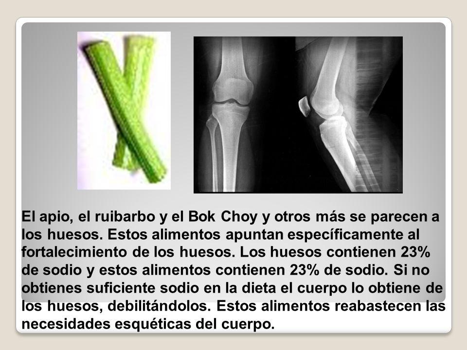 El apio, el ruibarbo y el Bok Choy y otros más se parecen a los huesos