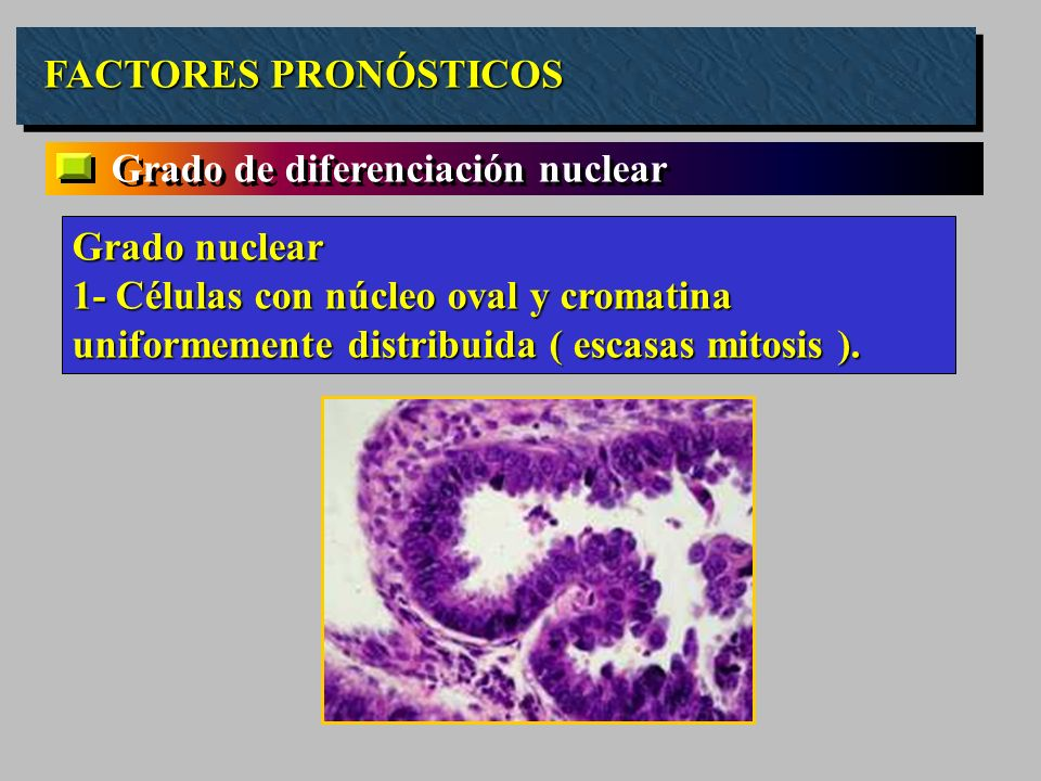 FACTORES PRONÓSTICOS Grado de diferenciación nuclear. Grado nuclear.