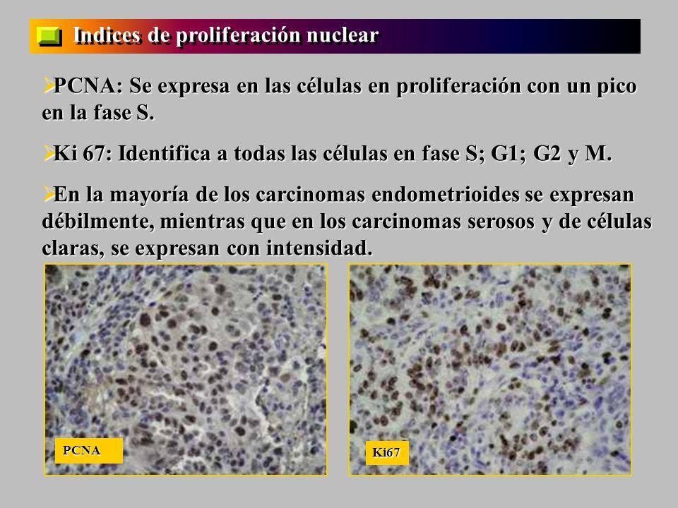 Indices de proliferación nuclear