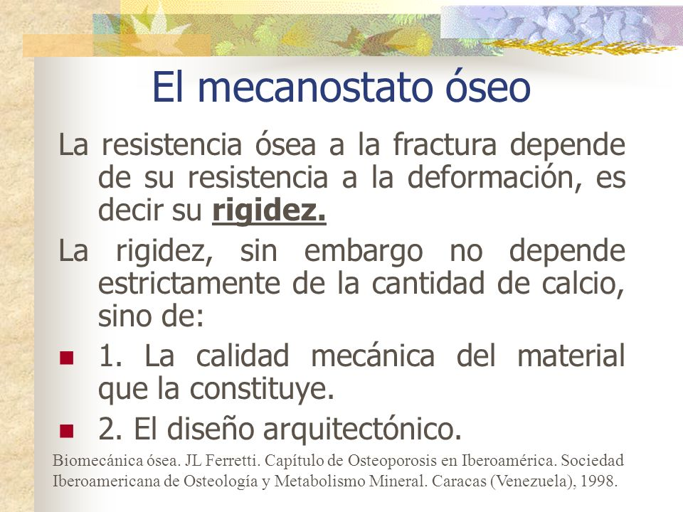 El mecanostato óseo La resistencia ósea a la fractura depende de su resistencia a la deformación, es decir su rigidez.