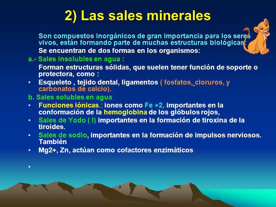 2) Las sales minerales Son compuestos inorgánicos de gran importancia para los seres vivos, están formando parte de muchas estructuras biológicas: