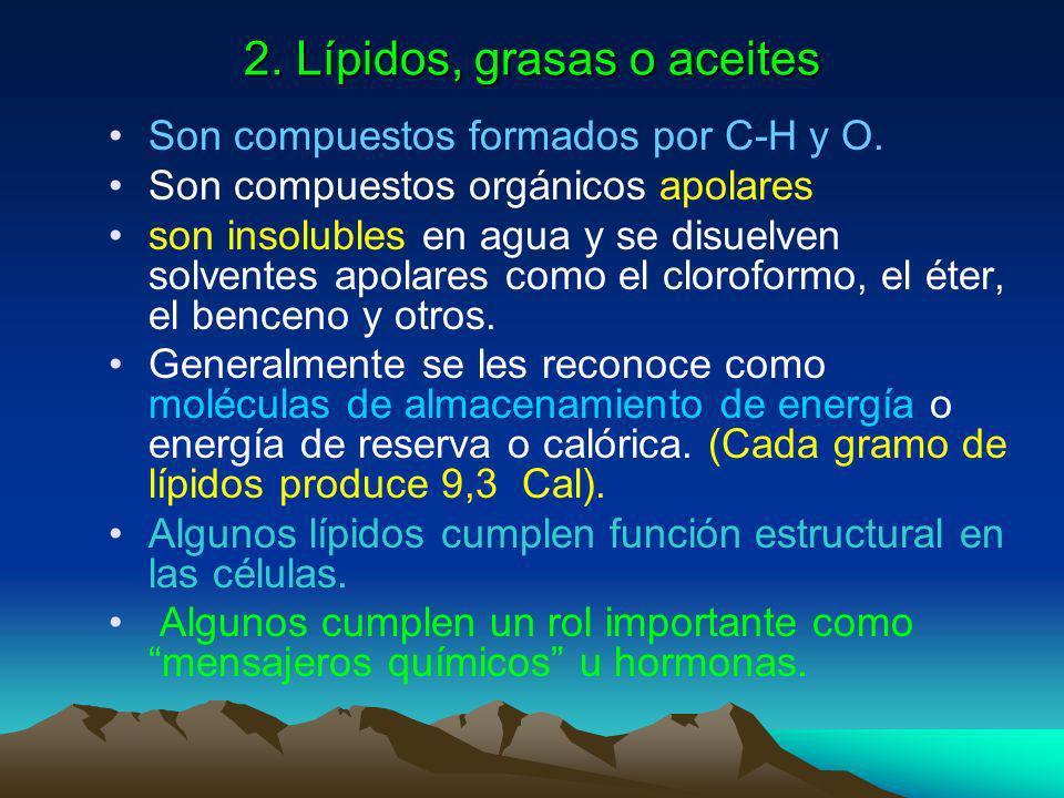 2. Lípidos, grasas o aceites