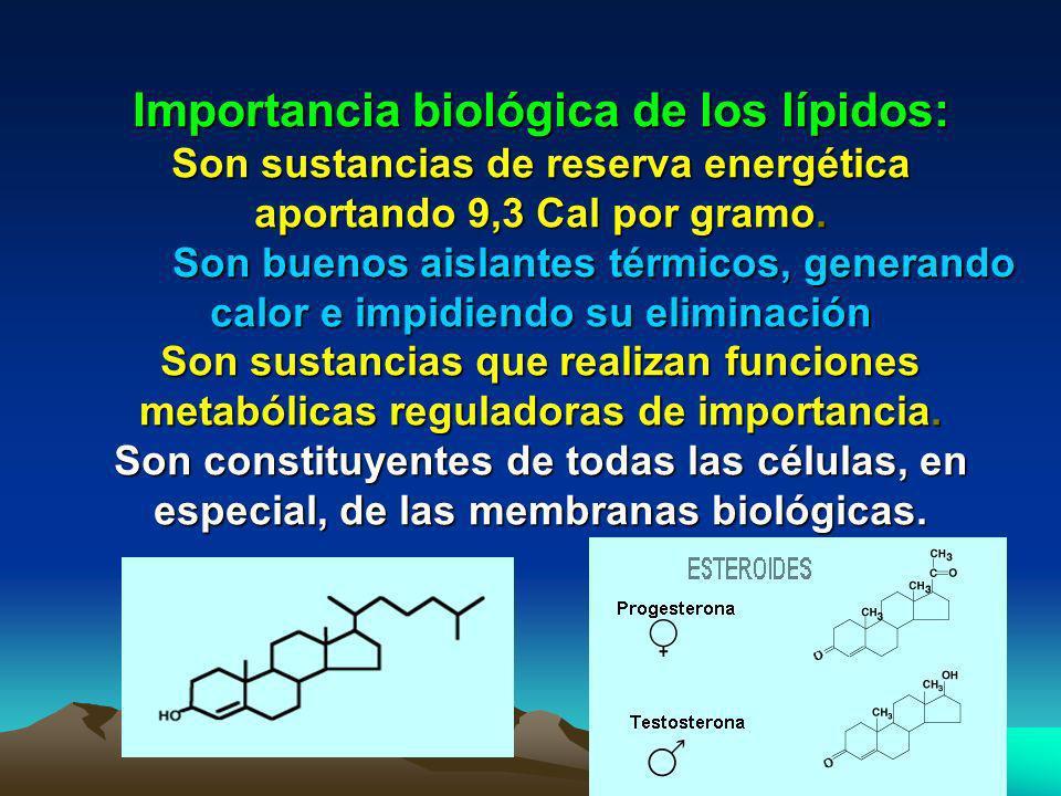 Importancia biológica de los lípidos: Son sustancias de reserva energética aportando 9,3 Cal por gramo.