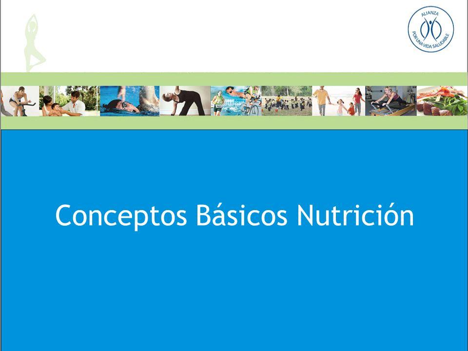 Conceptos Básicos Nutrición