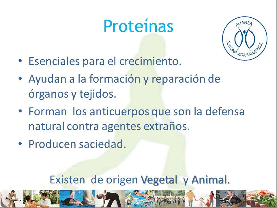 Existen de origen Vegetal y Animal.