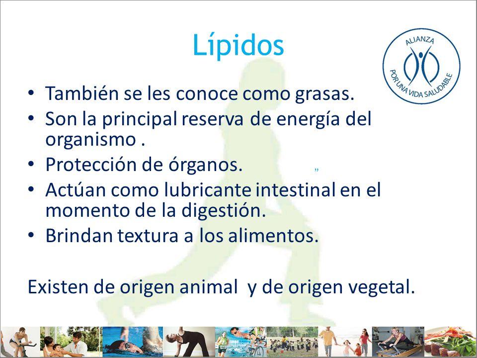 Lípidos También se les conoce como grasas.