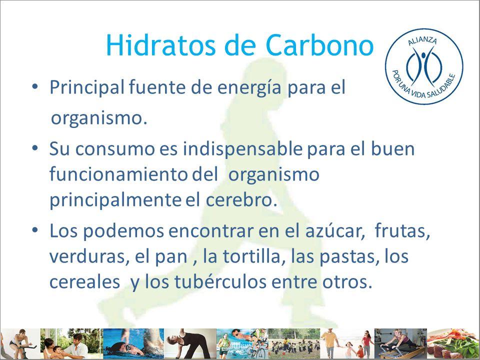 Hidratos de Carbono Principal fuente de energía para el organismo.