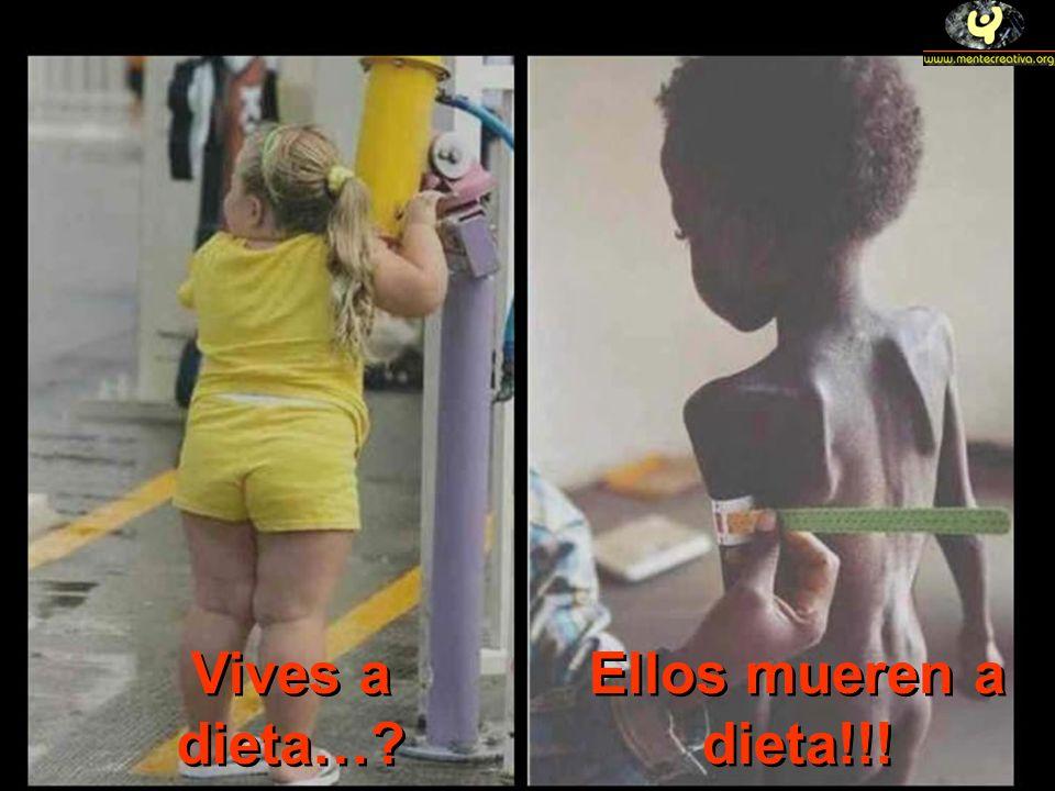 Vives a dieta… Ellos mueren a dieta!!!