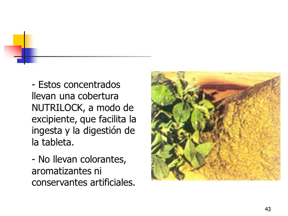 Nutrilock Estos concentrados llevan una cobertura NUTRILOCK, a modo de excipiente, que facilita la ingesta y la digestión de la tableta.