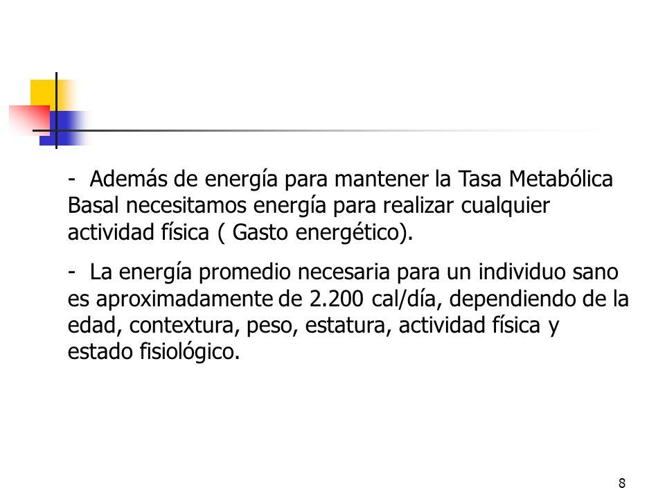 Energía- Además de energía para mantener la Tasa Metabólica Basal necesitamos energía para realizar cualquier actividad física ( Gasto energético).