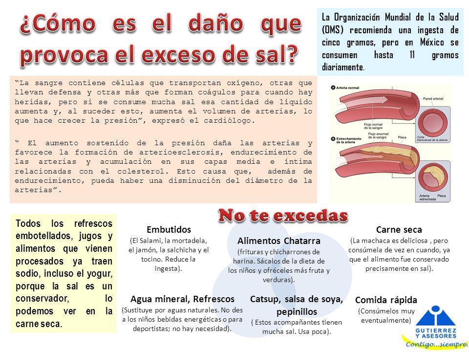¿Cómo es el daño que provoca el exceso de sal