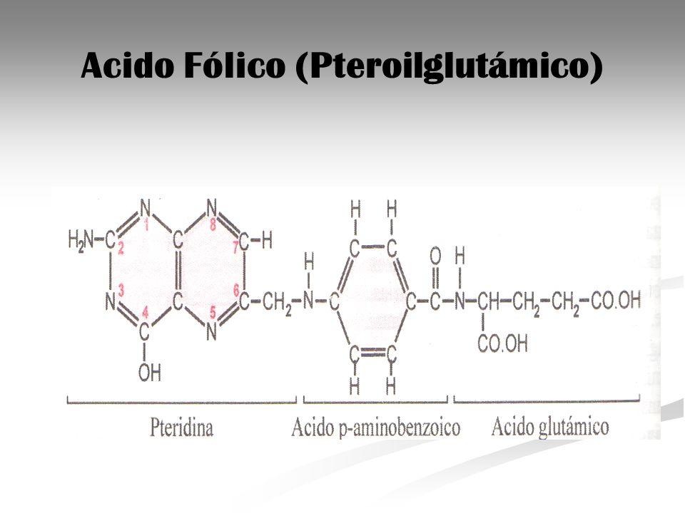 Acido Fólico (Pteroilglutámico)