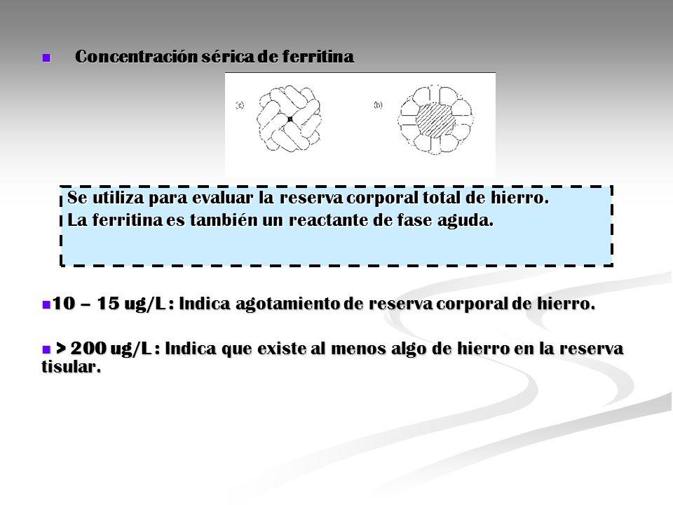 Concentración sérica de ferritina