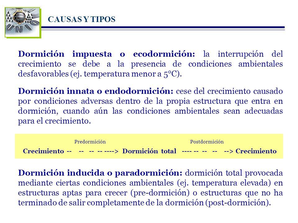 CAUSAS Y TIPOS