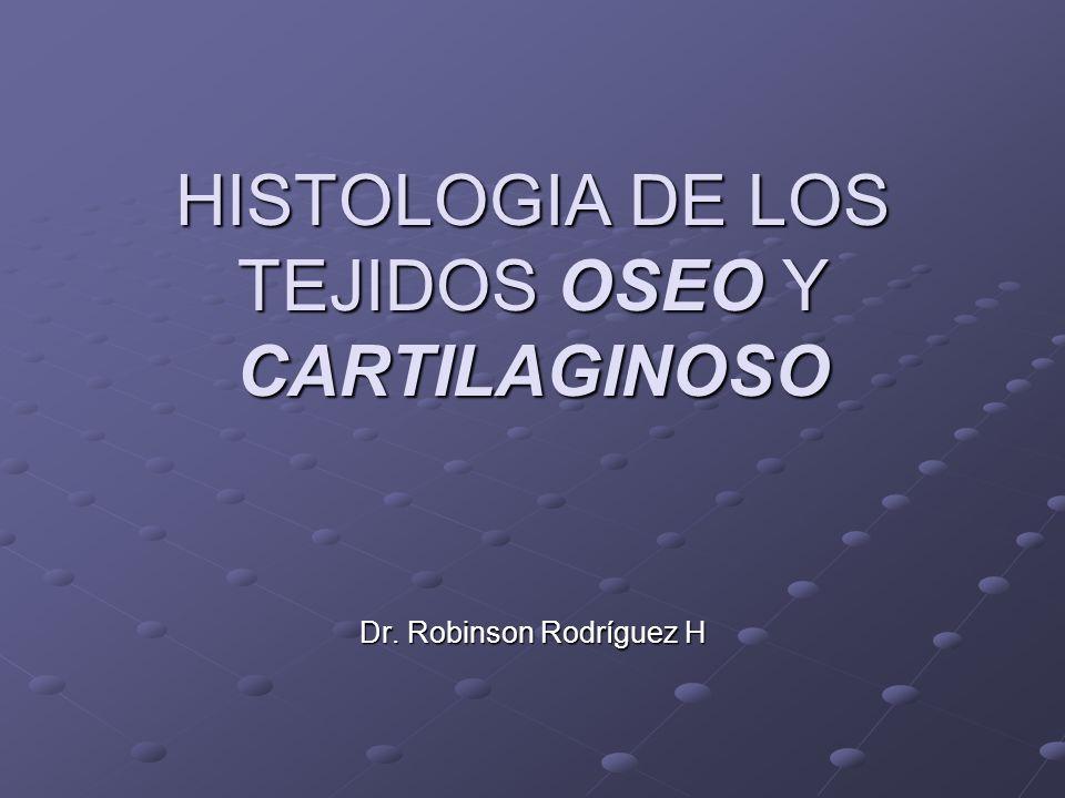 HISTOLOGIA DE LOS TEJIDOS OSEO Y CARTILAGINOSO