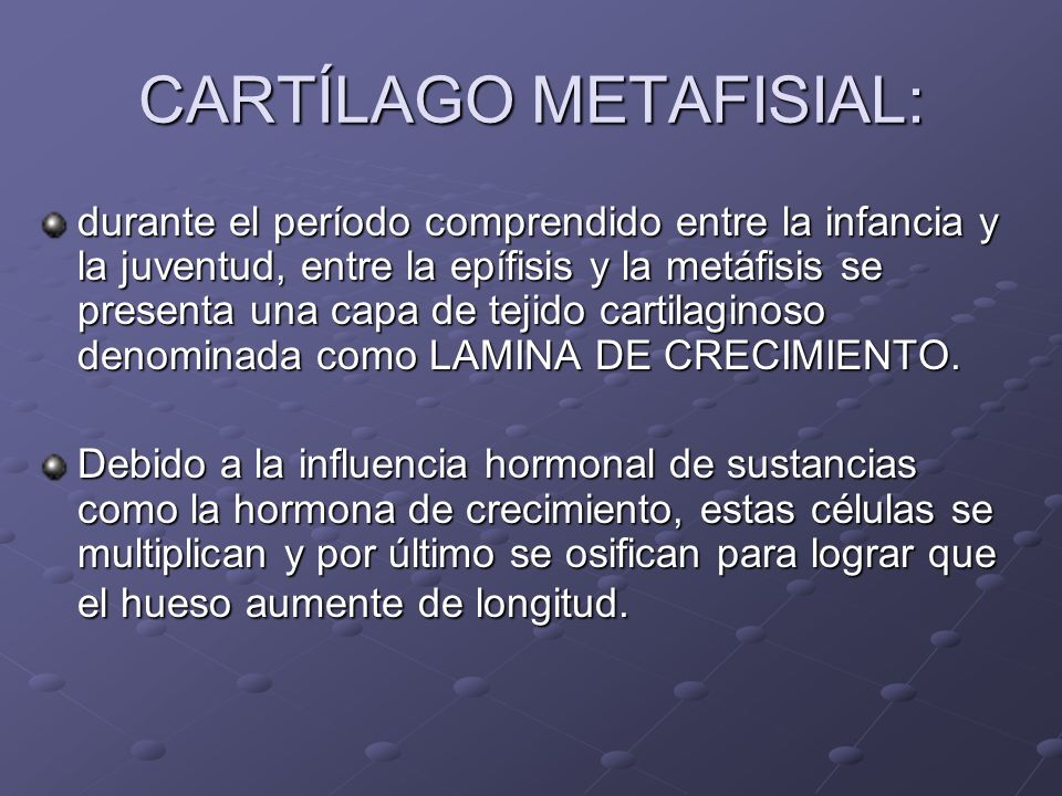 CARTÍLAGO METAFISIAL: