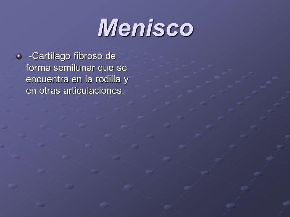 Menisco -Cartílago fibroso de forma semilunar que se encuentra en la rodilla y en otras articulaciones.