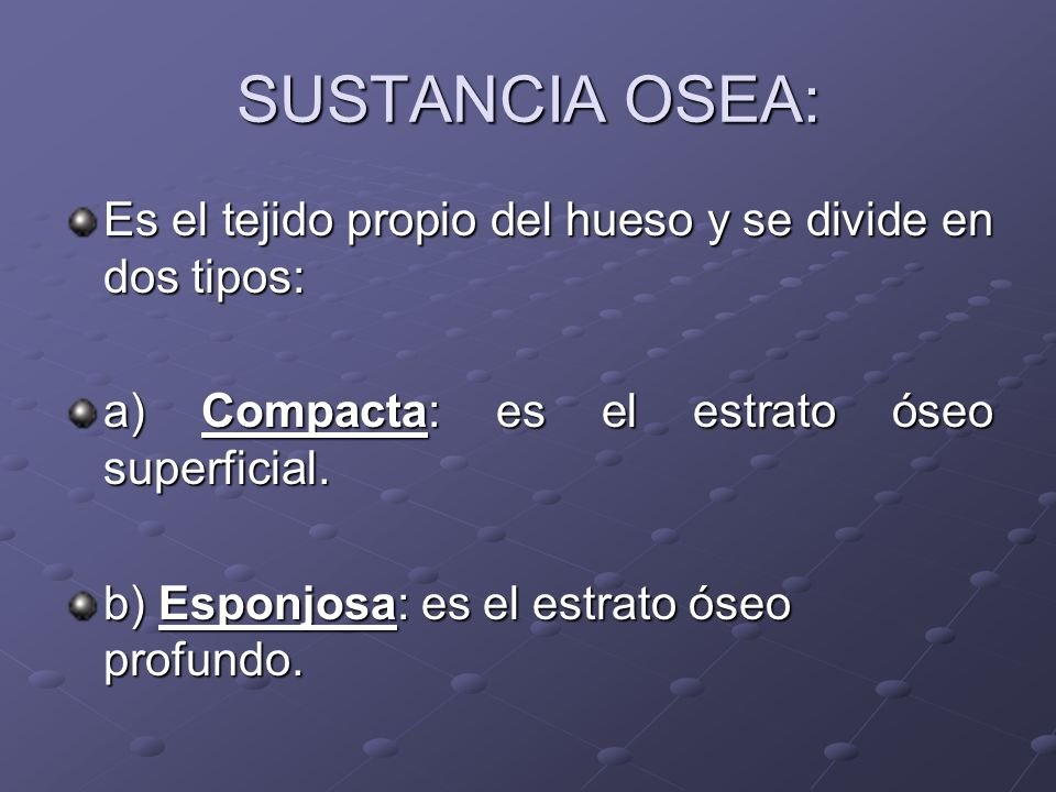 SUSTANCIA OSEA: Es el tejido propio del hueso y se divide en dos tipos: a) Compacta: es el estrato óseo superficial.