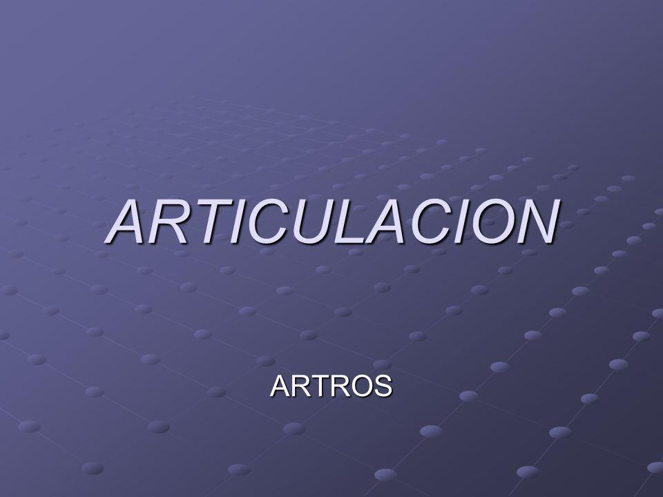 ARTICULACION ARTROS