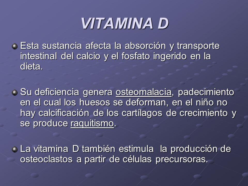 VITAMINA D Esta sustancia afecta la absorción y transporte intestinal del calcio y el fosfato ingerido en la dieta.