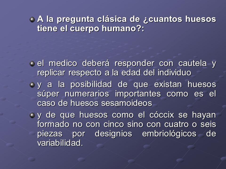 A la pregunta clásica de ¿cuantos huesos tiene el cuerpo humano :