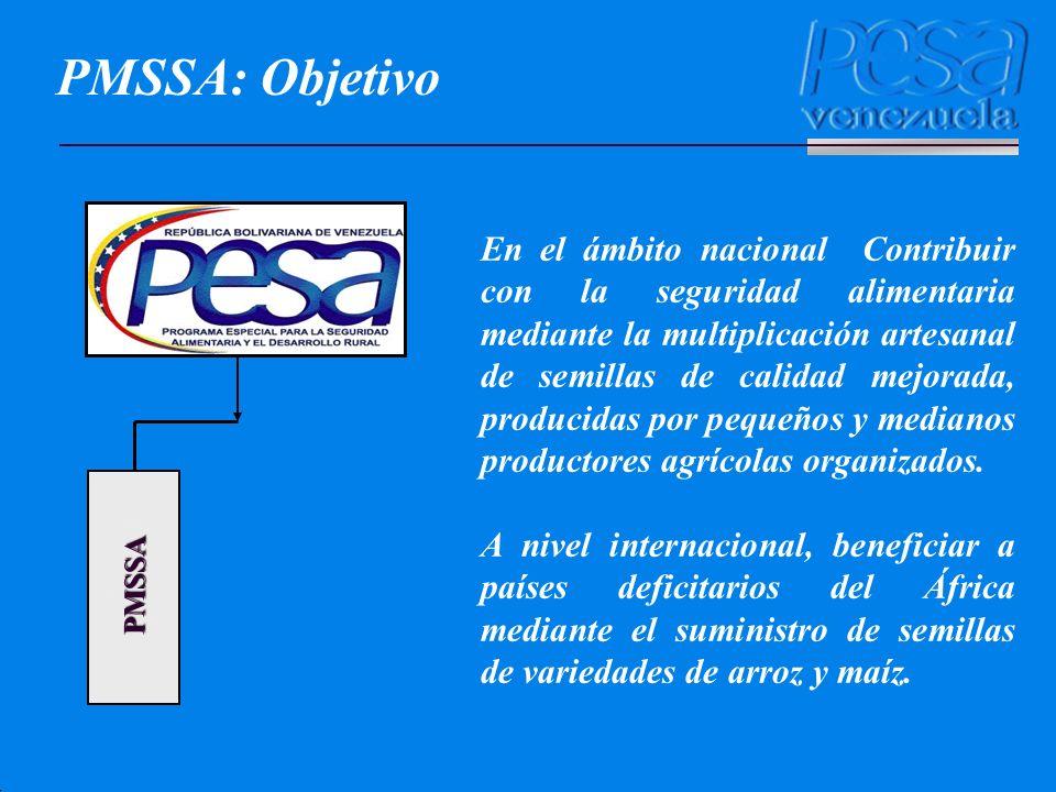 PMSSA: Objetivo PMSSA.