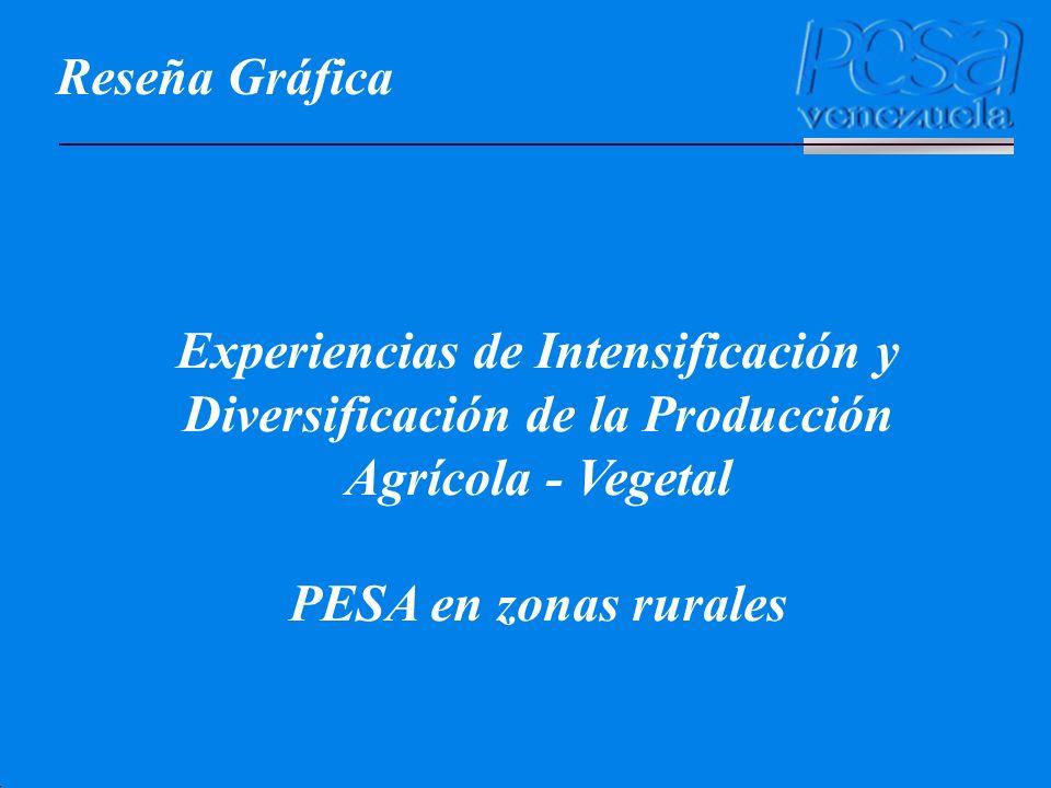 Reseña Gráfica Experiencias de Intensificación y Diversificación de la Producción Agrícola - Vegetal.