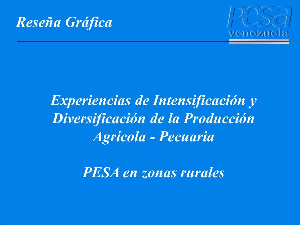 Reseña Gráfica Experiencias de Intensificación y Diversificación de la Producción Agrícola - Pecuaria.