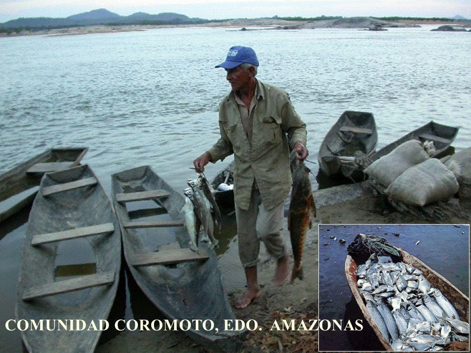 COMUNIDAD COROMOTO, EDO. AMAZONAS