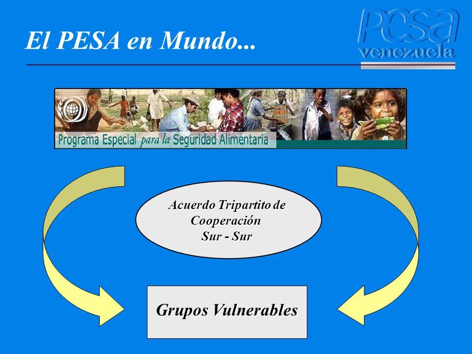 El PESA en Mundo... Grupos Vulnerables Acuerdo Tripartito de