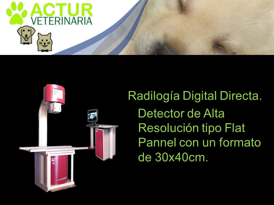 Radilogía Digital Directa.