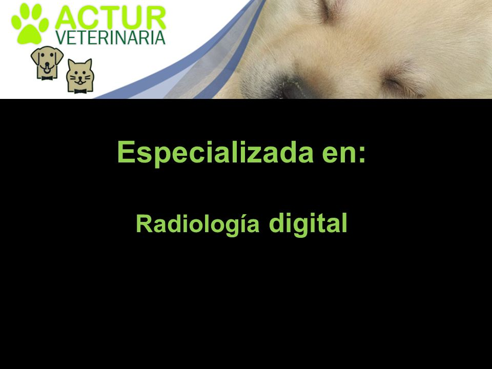 Especializada en: Radiología digital